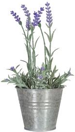 Искусственный цветок Home4you Lavender In Garden H25cm Purple 83822