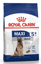 Royal Canin SHN Maxi Adult 5 Plus 15kg