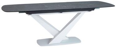 Signal Meble Table Cassino II Graphite/White Glass