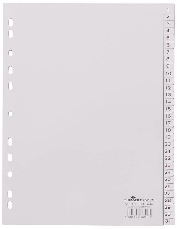 Durable Divider Index 1-31