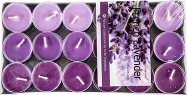 Home4you Talent Colour Candles 36pcs Purple