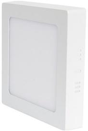 Volteno Square Wall Lamp 12W LED White