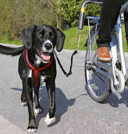 Trixie Dog Biker Set For Large Dogs