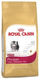 Royal Canin FBN Kitten Persian 10kg