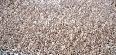 Kilimas The Rugsmith Solid shaggy carpet RSS 0006, rudas, 240x160 cm