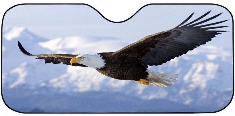 Загородка переднего стекла Bottari Eagle