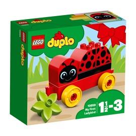Konstruktor LEGO Duplo, Minu esimene lepatriinu 10859