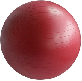 EB Fit Gym Ball 55cm Red