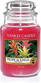 Yankee Candle Classic Large Jar Tropical Jungle 623g