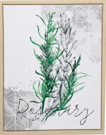 Home4you Print Picture Nature 40x50cm Rosemary