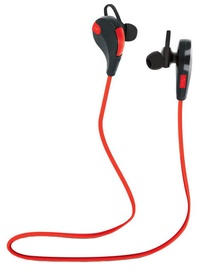 Ausinės Forever Earphones BT BSH-100 Red/Black