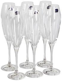 Bohemia Champagne Glass 220ml 6pcs