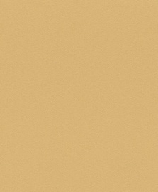 Viniliniai tapetai Rasch Selection 519723