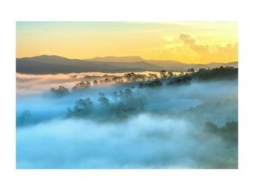 Signal Meble Foggy Landscape Glass Painting 120x80cm