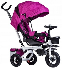 EcoToys Tricycle Trolley Pusher Rose