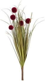 Home4you Bouquet Herbarium 5pcs In Garden H59cm Brown 83852
