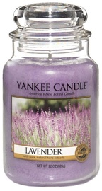 Yankee Candle Classic Large Jar Lavender 623g