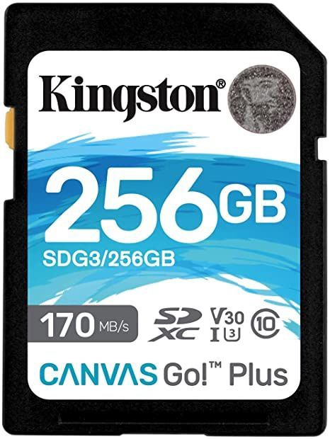 Kingston Canvas Go! Plus 256GB SDXC UHS-I Class 10