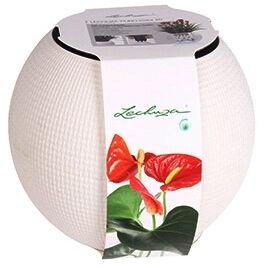 Verners Puro Flower Pot White 20cm