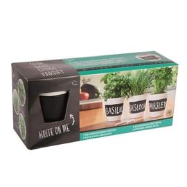 Maitsetaimede istutuskomplekt Buzzy Organic Bio, 3 potti