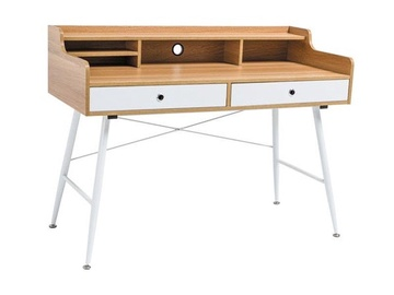 Signal Meble Writing Desk B160 Oak