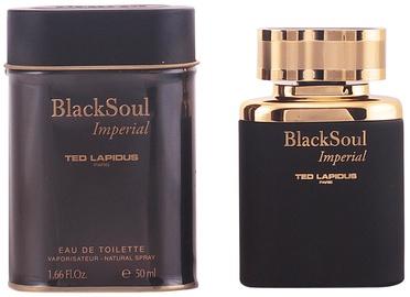 Tualetes ūdens Ted Lapidus Black Soul Imperial 50ml EDT