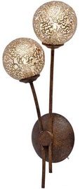 Paul Neuhaus Greta Wall Lamp 2x40W G9 Antique Brown/Gold