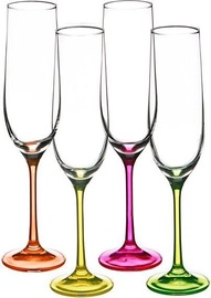 Bohemia Champagne Glass 190ml 4pcs Neon