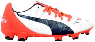 Futbolo bateliai Puma Evo Power AG