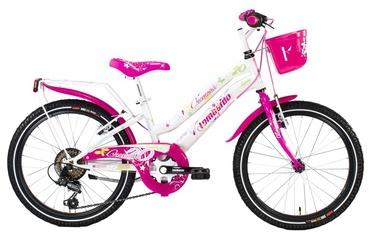"""Paauglių dviratis Lombardo Cremona, 20"""""""