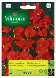 Puķu zirnīšu sēklas Vilmorin P454