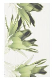 Keraminės dekoruotos sienų plytelės Verno Green Flower, 40 x 20 cm