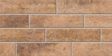 SN Brick Brown 30x60cm