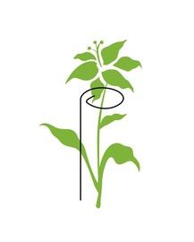 Augalų laikikliai, metaliniai, žali, 3 vnt, 40 cm