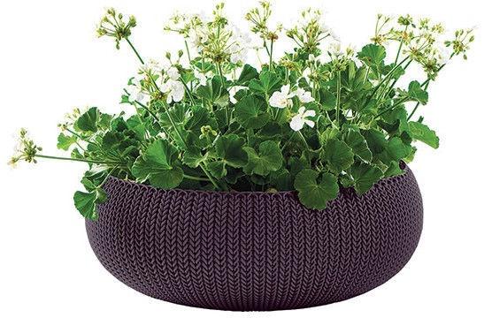 Curver Flower Pot Cozy L 230221 Dark Violet