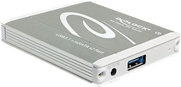 Delock 2 x mSATA USB 3.1 Gen 2 RAID Enclosure
