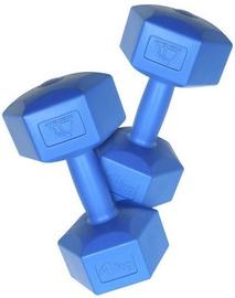 Meteor Dumbbell Blue 2x4kg