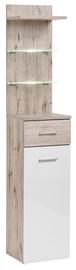 ASM Gustavo Shelf Type B+C Gloss White/Wellington Oak