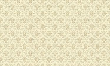 Flizelino tapetai, Rasch, 954432, Maximum XIV, gelsvas, klasikinis