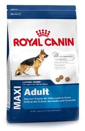 Sausas ėdalas šunims Royal Canin Maxi Adult, 15 kg
