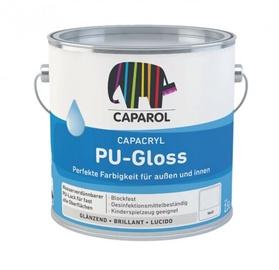 Krāsa mēbelēm CC PU-Gloss BM 0,7L