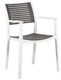 Home4you Chairs Note 4pcs Grey/White