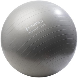 HMS Gym Ball YB02 75cm Grey