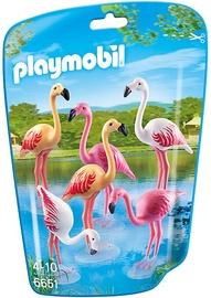 Playmobil Flock Of Flamingos 6651