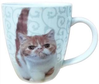 Shenzhen Sunnie Cup with Grumpy Cat 420ml