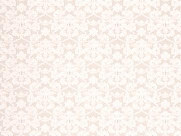 Popieriniai tapetai B66.4, 5167-01