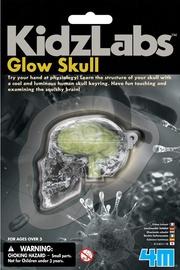 4M Glow Skull 3313