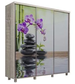 MN Orchid 3D Wardrobe w/ Sliding Doors Sonoma Oak