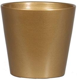 Вазон Verners Flower Pot Gold 14x13cm