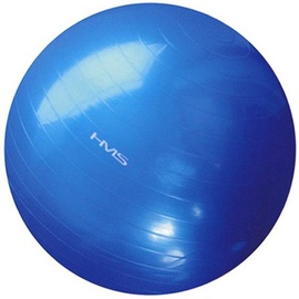 HMS Gym Ball YB01 55cm Blue